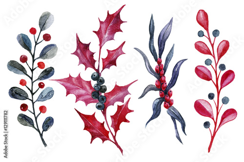 Fotografie, Obraz  Watercolor hand painted black and red Christmas plants.
