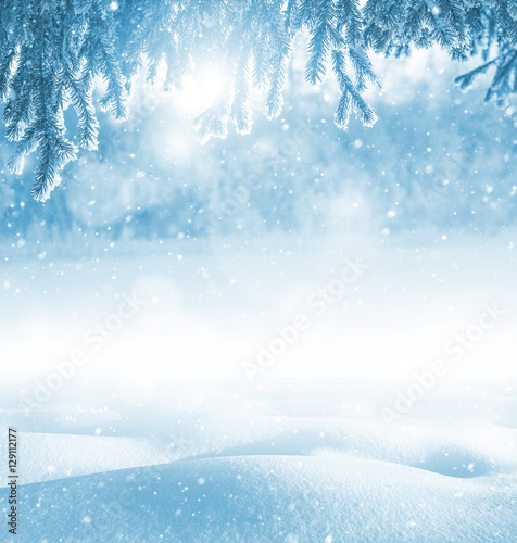 Photo Stands Light blue Winter bright background. Christmas landscape with snowdrifts and pine branches in the frost.
