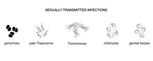 Causative Agents Of Genital In...