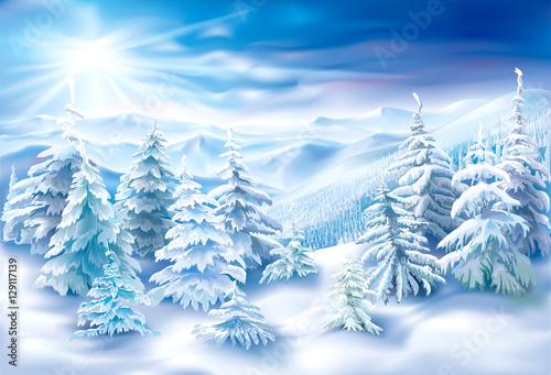 Fotografia  Winter Snowy Landscape