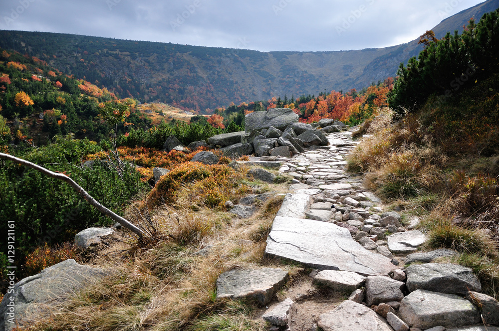 Fototapety, obrazy: Krajobraz górski, Karkonosze.