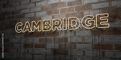 Fényképezés CAMBRIDGE - Glowing Neon Sign on stonework wall - 3D rendered royalty free stock illustration