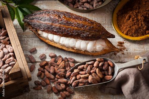 Fotografía  Cocoa beans and pod