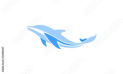 Fotografia dolphin