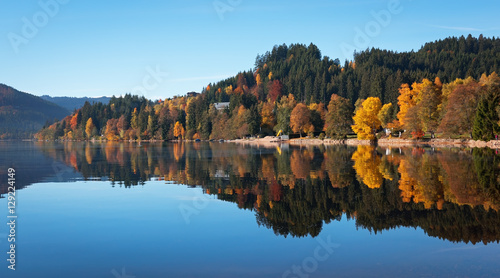 Canvas Prints Pool Autumn forest reflected in the surface of the lake Titisee, Germ