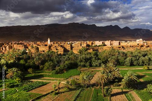 Fotobehang Chocoladebruin Oasis of Tinerhir, Morocco, Africa