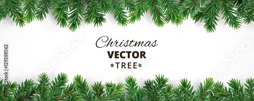 Fotomural  Banner with vector christmas tree branches and space for text.