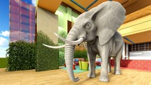 Pink Elephant In The Living Room 3d Rendering