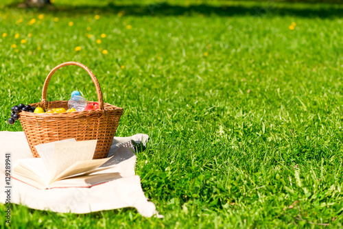Aluminium Prints Picnic basket for a picnic on the lawn and the free space on the right