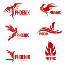 Set Of Stylized Graphic Phoenix Bird Logo Templates, Vector Illustration Isolated On White Background. Collection Of Creative Phoenix Bird Logotype Templates, Growth, Development, Power Concept