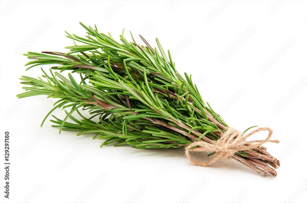 Fototapety, obrazy: Rosemary bound on a white background