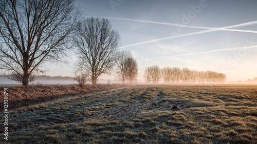 Spoed Foto op Canvas Weide, Moeras Nebliger Sonnenaufgang in Brandenbzrg