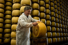 Experienced Worker In Cheese F...
