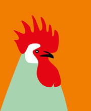 Drawn Rooster Colorful Rooster...