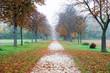 Laubbedeckte Allee mit Bäumen in einem Park