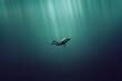 canvas print picture - Taucher im Meer