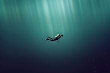 Taucher Im Meer