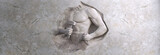 Fototapeta Kamienie - epic background of athletic man cuts his body of marble stone