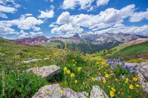 Plakat Góry Aspen