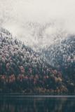Foggy Coniferous Forest i jezioro dzikie lasy krajobraz Koncepcja podróży spokojny widok malowniczych - 129413380