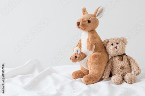 teddy bear hug kangaroo ( good feeling )