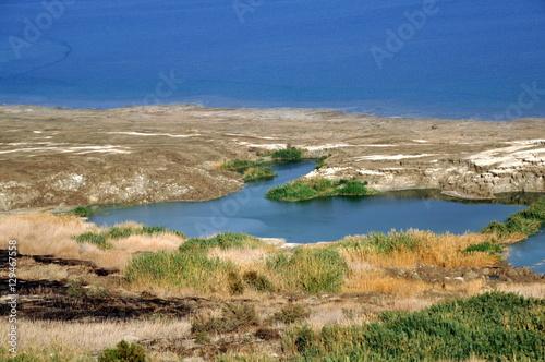Fotobehang Midden Oosten Am Ufer des Toten Meeres