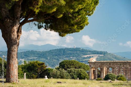 Staande foto Artistiek mon. Landschaft mit Pinie und Griechischem Tempel