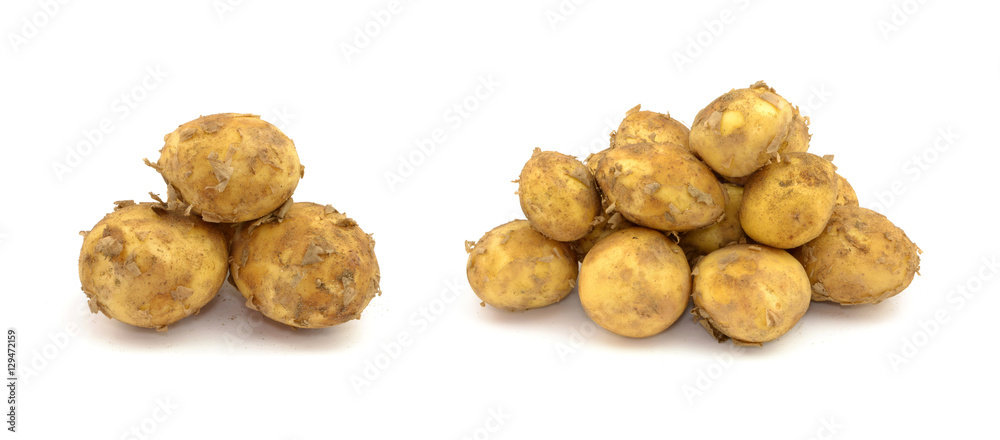 Fototapeta młode ziemniaki