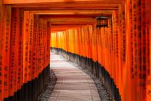 Thousands Of Torii Gates At Fu...