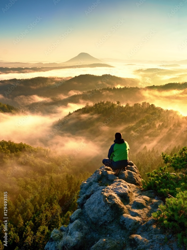 Fototapety, obrazy: Man tourist sit on exposed rock. View point with heather and branches