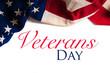 Vintage American Flag for Veterans day