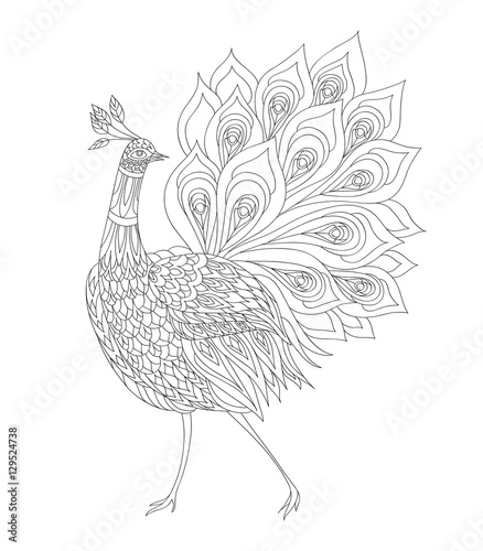 Coloring Book Page Peacock Ornamental Fantasy Bird Vector Illustration Hand Drawn Thin Line Drawing Buy This Stock Vector And Explore Similar Vectors At Adobe Stock Adobe Stock