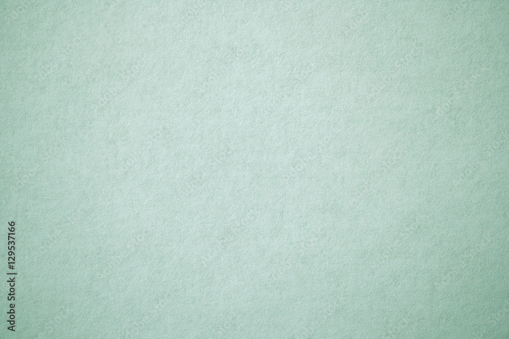 Fototapety, obrazy: sage green paper texture
