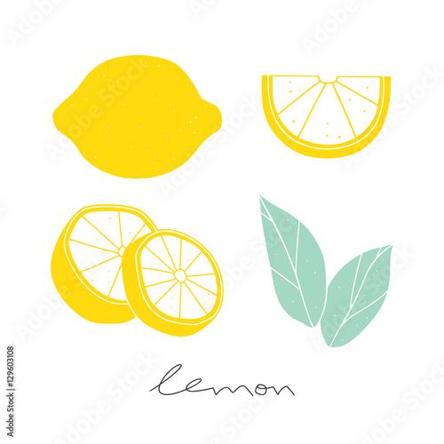 Vector lemon set.  Hand drawn sliced lemon. Kitchen illustration on the white background Fototapete