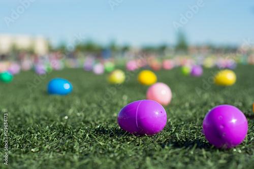 Photo  colorful eggs