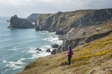 A Woman Looks Out Over Dramatic Cornish Coastline Near Kynance Cove On The Lizard Peninsula, Cornwall