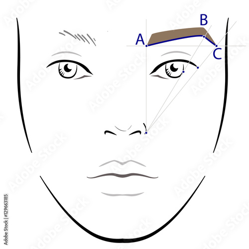 Fotografering  How to paint the eyebrows. Vector trendy makeup brows scheme.