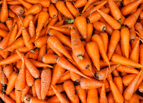 Carrot background. Macro. Organic food.