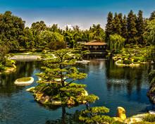 Japanse Garden And Teahouse