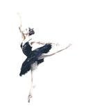 Baleriny tancerz Odile czarny łabędź łabędź jezioro akwarela malarstwo ilustracja na białym tle - 129736786