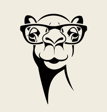 Hipster Camel Wearing Glasses. Vector Illustration For T-shirt, Poster, Print Design.