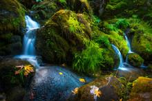 Waterfall Background Oregon Fa...