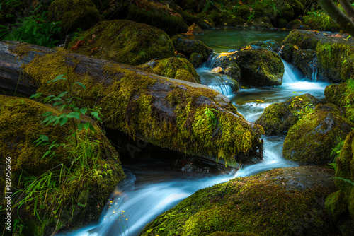 Küchenrückwand aus Glas mit Foto Wasserfalle Beautiful Cascading water of Watson Creek Oregon