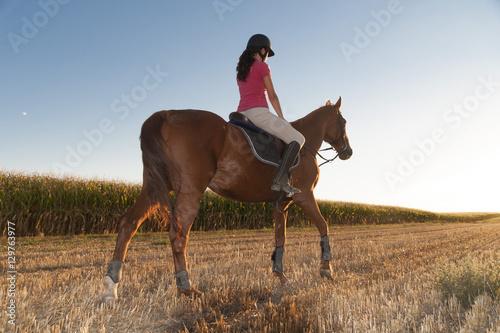 Fotografie, Obraz  caballo