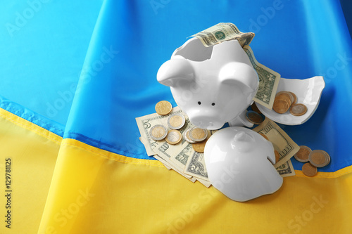Broken piggy bank on flag background Poster