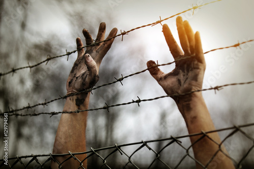 Fototapeta Refugee men and fence
