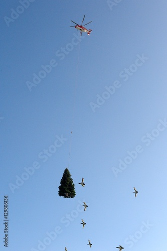 Fotografering  Helicopter transporting christmastree