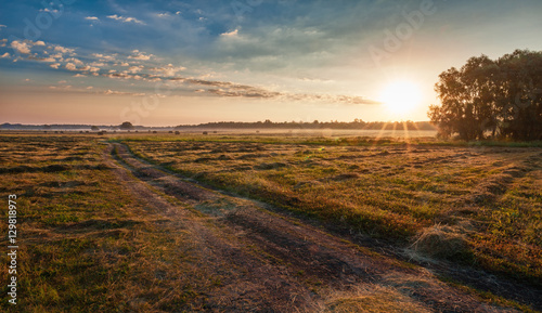 Staande foto Grijs Morning rural landscape