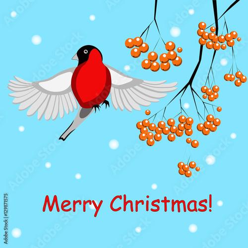 Carta da parati A christmas card with a bullfinch and Rowan
