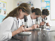 Group of students working at laboratory